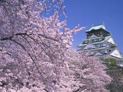 http://gaijinlife.files.wordpress.com/2010/02/osaka_castle-saku.jpg