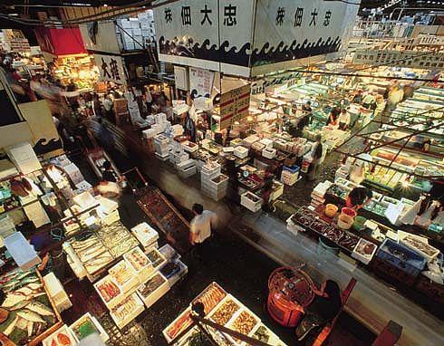 Tsukiji fish market gaijin life for Tsukiji fish market